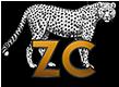Zillionaire Corporation | Angelina Zimmerman